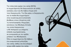 basket_leaflet_low-3